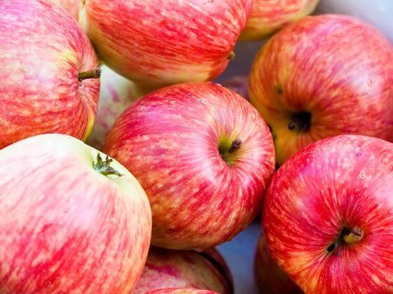 alergija-na-jabuke