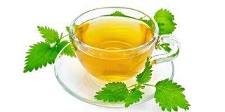 Čaj od koprive – priprema i ljekovita svojstva