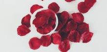 Latice ruže