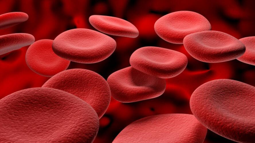 crvene krvne stanice