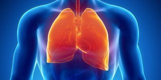 Plućna embolija – utječe li višesatno sjedenje pred televizorom na razvoj bolesti?