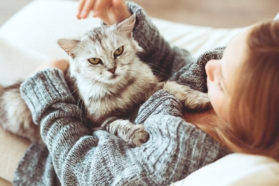 cat-allergy