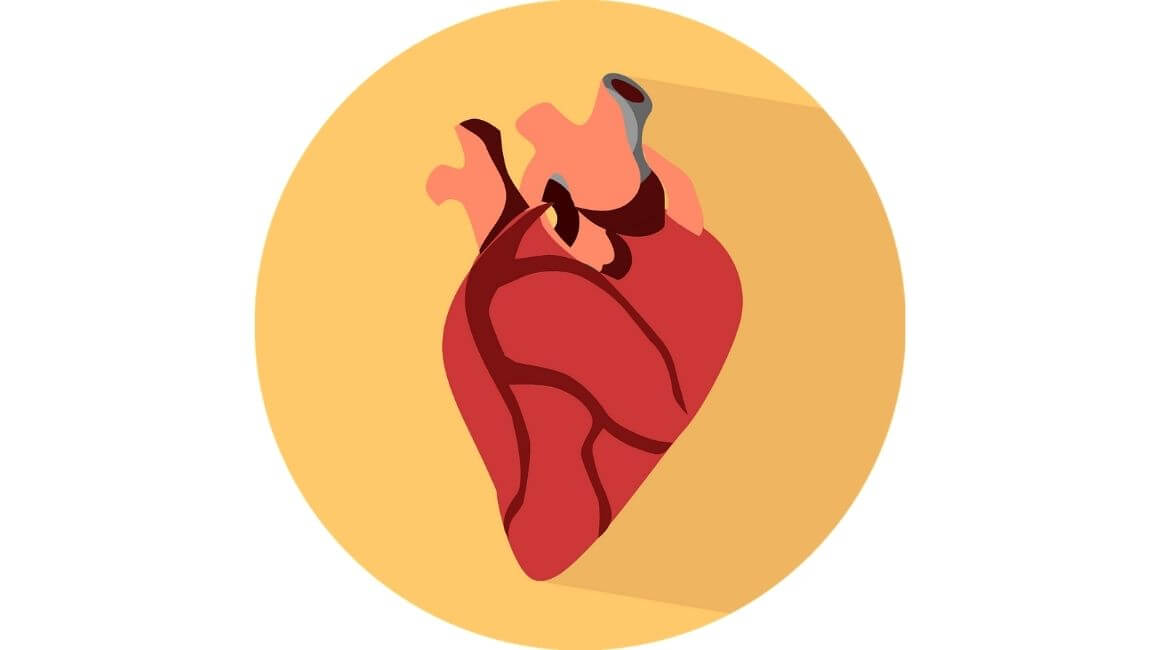 Tetralogija Fallot - srce