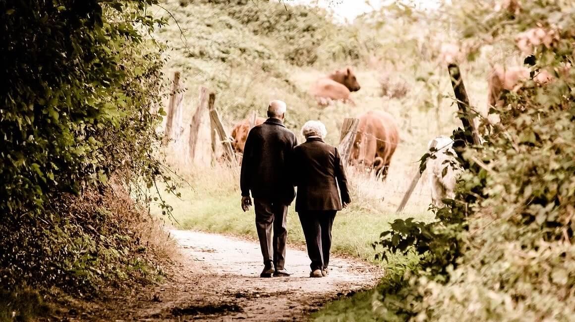 Aktivnosti za starije