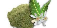 Nim prah – lekovita svojstva i upotreba