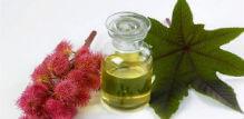 Ricinusovo ulje za rast kose, negu kože i čvrste nokte