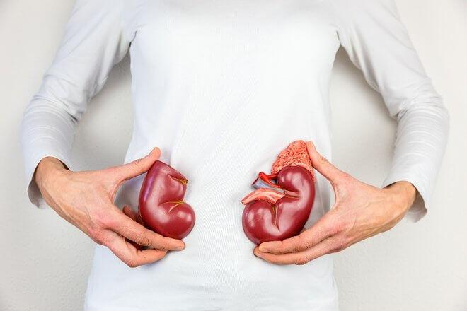 Zdravlje bubrega
