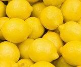 limun korica svrha