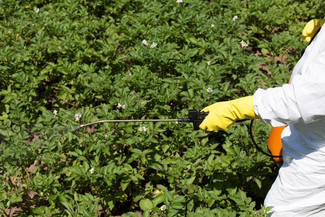 Prskanje pesticidima