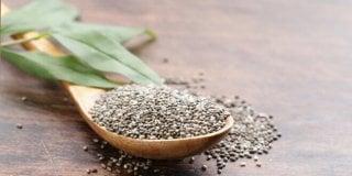 Chia sjemenke – supernamirnica bogata hranjivim tvarima