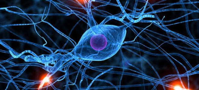 periferna neuropatija