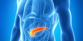 Rak gušterače – uzroci, simptomi i liječenje