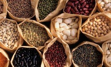 biljni izvori proteina