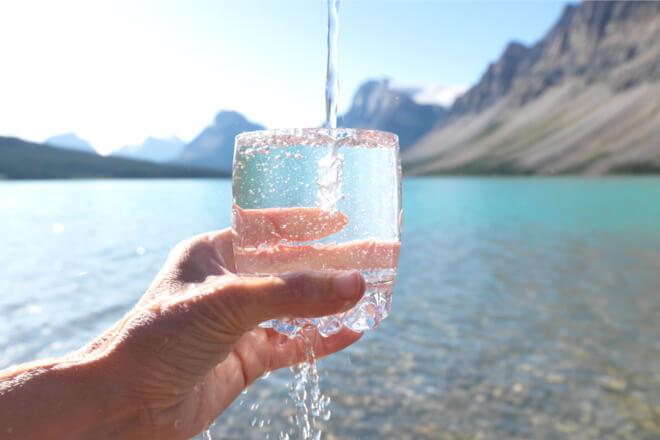 podocnjaci voda