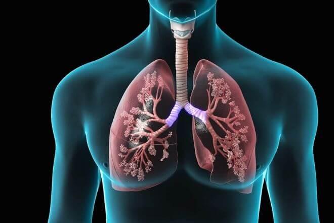 Bolesti plućnih zalistaka