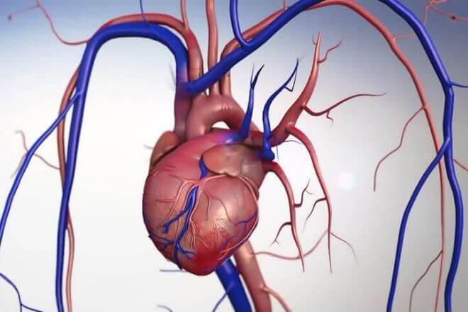 gubitak težine nakon zamjene aortnog zaliska smršaviti bikini