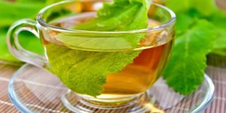 Čaj od kadulje (žalfije) – ljekovita svojstva i priprema