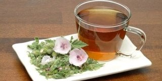 Sljezov čaj – ljekovita svojstva i priprema