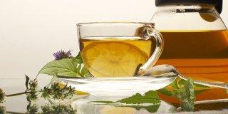 Čaj od matičnjaka – ljekovita svojstva i priprema