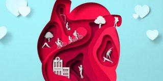 Srčane mane – razvoj, simptomi i liječenje
