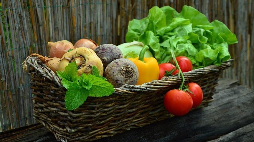 namirnice za zdravlje crijeva