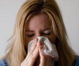 prehlada viroza