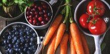 esencijalni nutrijenti