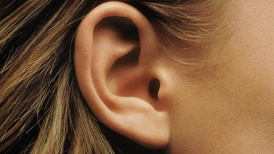 hrvati sluh problem