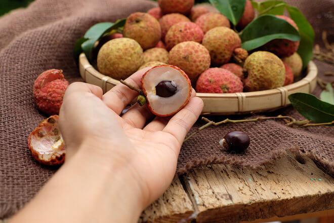 Plodovi ličija