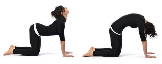 yoga-macka-krava-poza