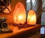 himalajska-lampa