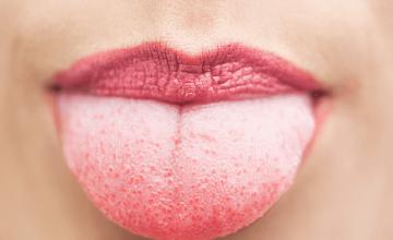 jezik-izbliza