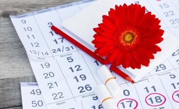 menstrualni-kalendar