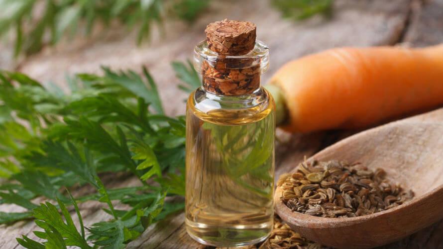 Macerat mrkve – njega suhe kože i pomoć za ubrzano tamnjenje | Izrada  prirodne kozmetike - Kreni zdravo!