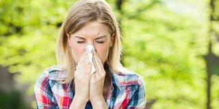 Pobijedite ambroziju prirodnim lijekovima