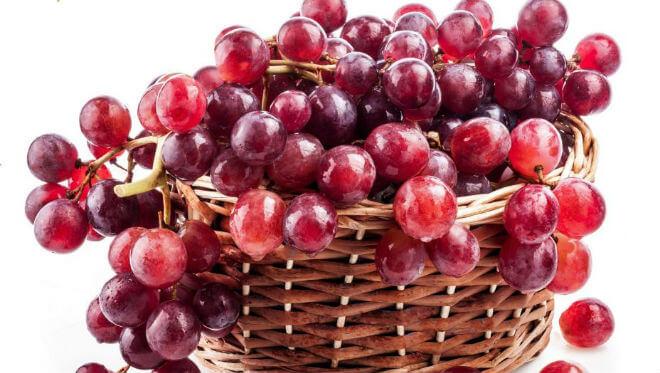 resveratrol-grozde