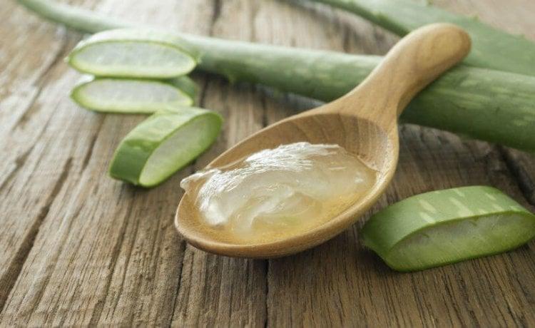 Aloe méz receptek prosztatagyulladáshoz