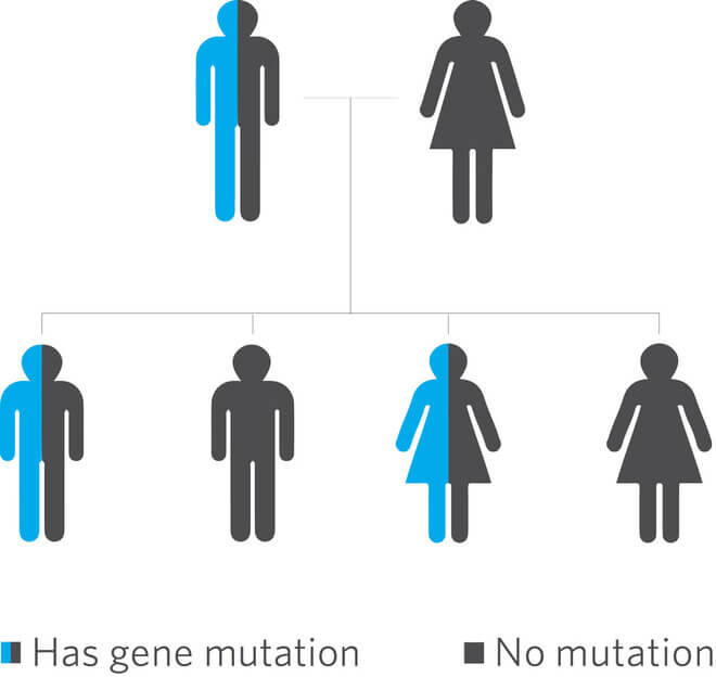 genetika-nasljedstvo