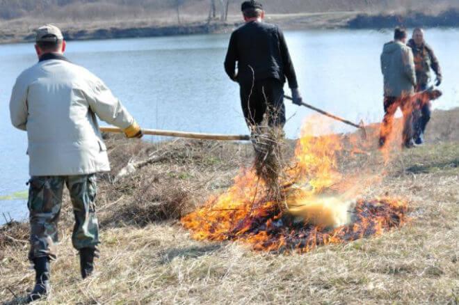 spaljivanje-biljnog-otpada