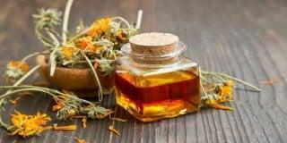 Macerat nevena – recept za izradu ulja od nevena