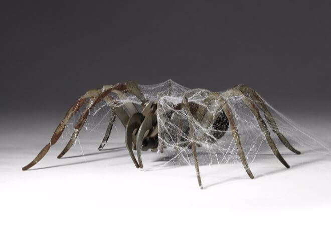 Arahnofobija-strah-od-pauka