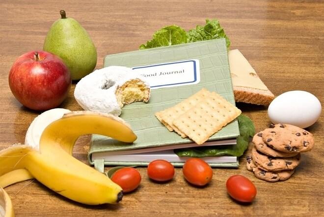dnevnik hrane
