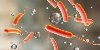 Kolera – kako se prenosi, dijagnoza, liječenje i prevencija