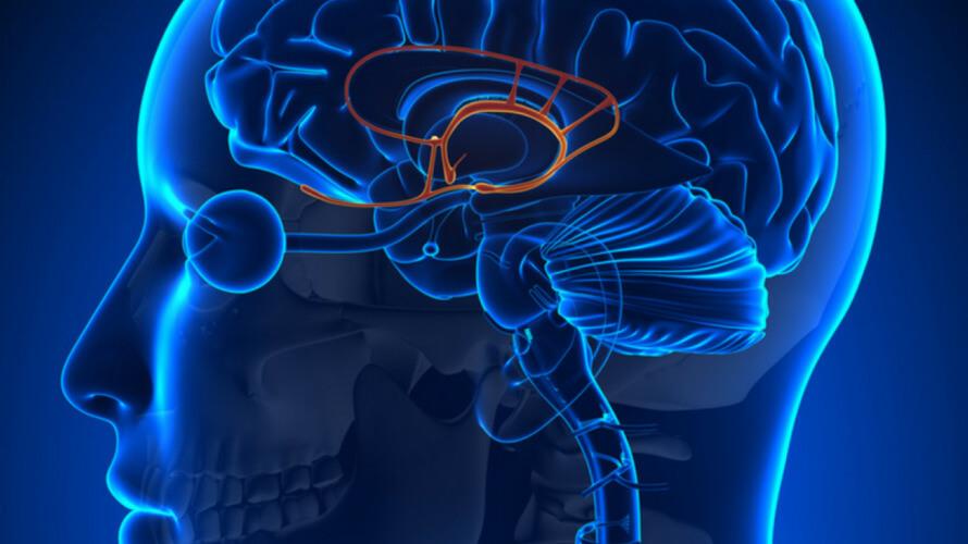 tumor hipofize