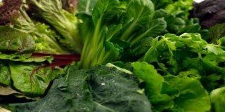 Zelena kura – što je, namirnice, rezultati, liječenje candide, smoothie, nuspojave
