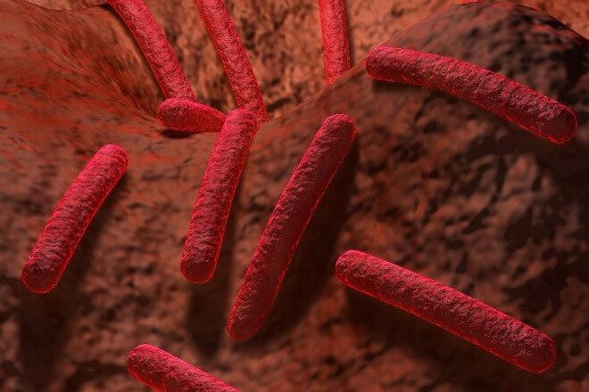 Strah-od-bakterija