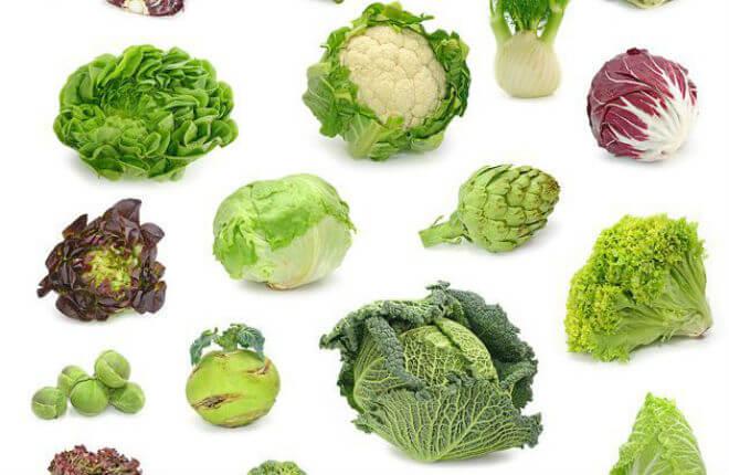 Fitoestrogen u hrani – kako nadomjestiti ili smanjiti estrogen?   Kreni  zdravo!