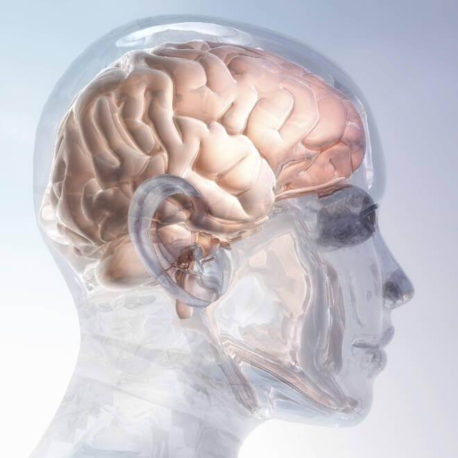 Neurološko-oštećenje-mozga
