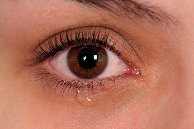 Suzne-oči