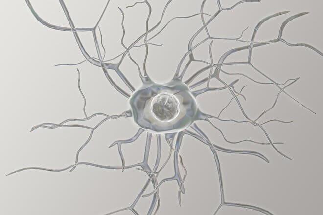 Gubitak živčanih stanica